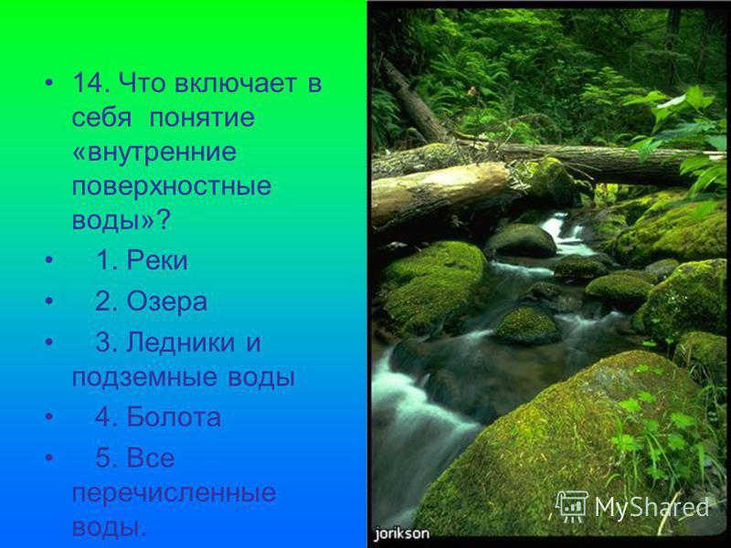 14. Что включает в себя понятие «внутренние поверхностные воды»? 1. Реки 2. Озера 3. Ледники и подземные воды 4. Болота 5. Все перечисленные воды.