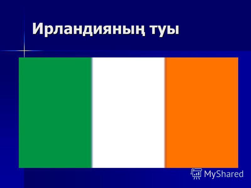Ирландияның туы