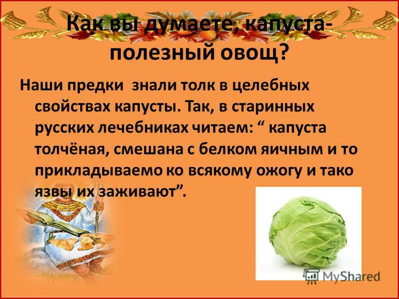 Как вы думаете, капуста- полезный овощ? Наши предки знали толк в целебных свойствах капусты. Так, в старинных русских лечебниках читаем: капуста толчёная, смешана с белком яичным и то прикладываемо ко всякому ожогу и такой язвы их заживают.