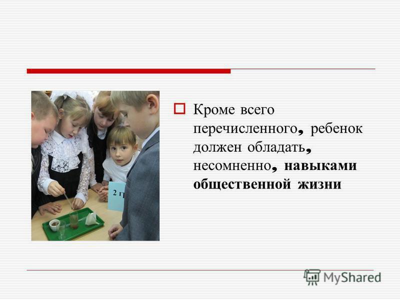 Кроме всего перечисленного, ребенок должен обладать, несомненно, навыками общественной жизни