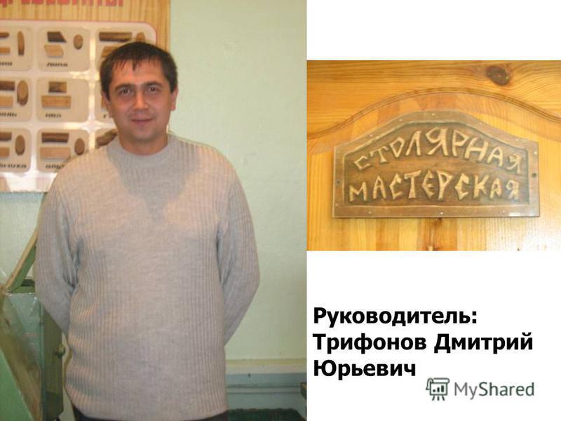 Руководитель: Трифонов Дмитрий Юрьевич
