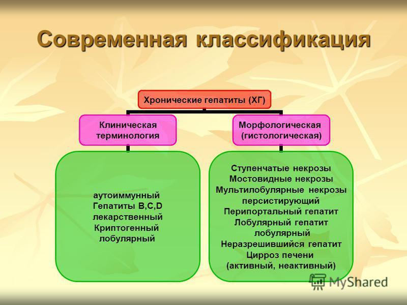 Современная классификация Хронические гепатиты (ХГ) Клиническая терминология аутоиммунный Гепатиты B,C,D лекарственный Криптогенный лобулярный Морфологическая (гистологическая) Ступенчатые некрозы Мостовидные некрозы Мультилобулярные некрозы персисти