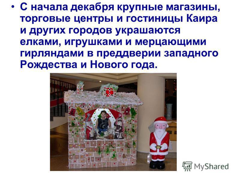 По легенде - в ночь на Рождество сына Божьего Иисуса Христа и покраснел этот великолепный цветок Пуансенция, и произошло это в славном городе Вифлееме - отсюда и название- Вифлеемская Звезда.