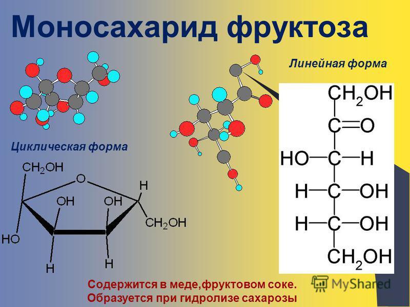 Моносахарид фруктоза Содержится в меде,фруктовом соке. Образуется при гидролизе сахарозы Циклическая форма Линейная форма