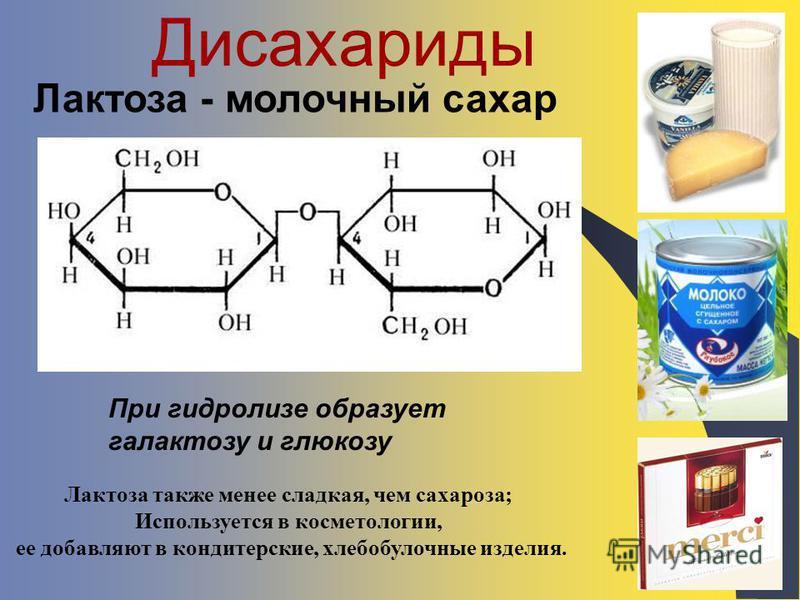 Дисахариды Лактоза - молочный сахар При гидролизе образует галактозу и глюкозу Лактоза также менее сладкая, чем сахароза; Используется в косметологии, ее добавляют в кондитерские, хлебобулочные изделия.