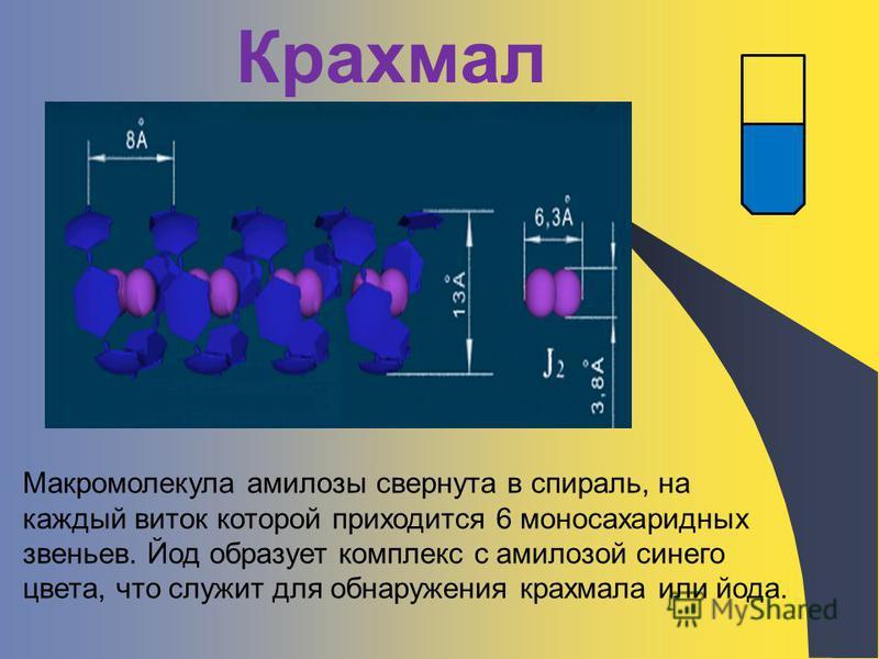 Крахмал Макромолекула амилозы свернута в спираль, на каждый виток которой приходится 6 моносахаридных звеньев. Йод образует комплекс с амилозой синего цвета, что служит для обнаружения крахмала или йода.