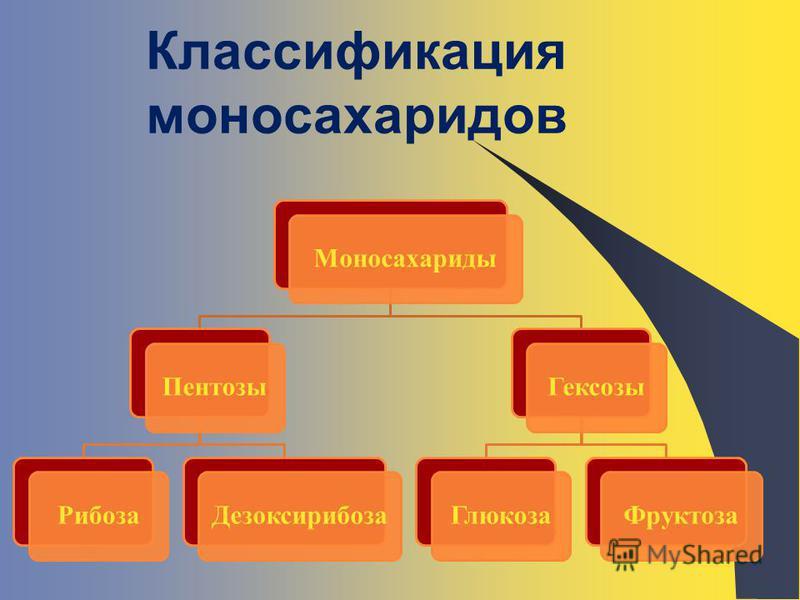 Классификация моносахаридов Моносахариды ПентозыРибоза ДезоксирибозаГексозы ГлюкозаФруктоза