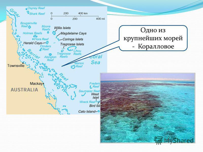 Одно из крупнейших морей - Коралловое