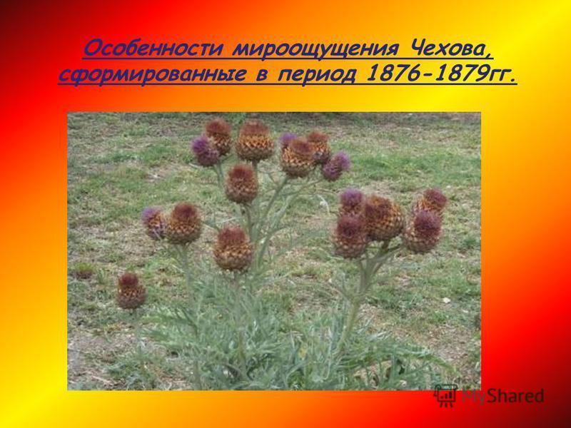 Особенности мироощущения Чехова, сформированные в период 1876-1879 гг.