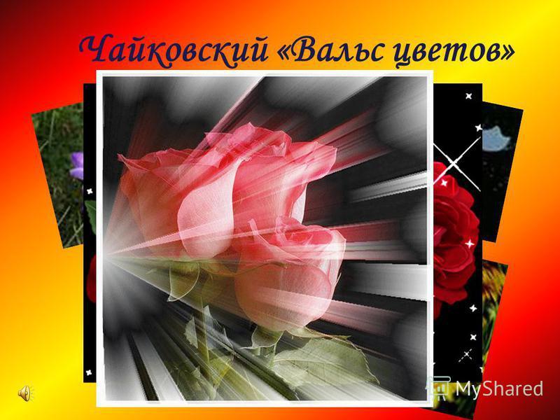 Чайковский «Вальс цветов»