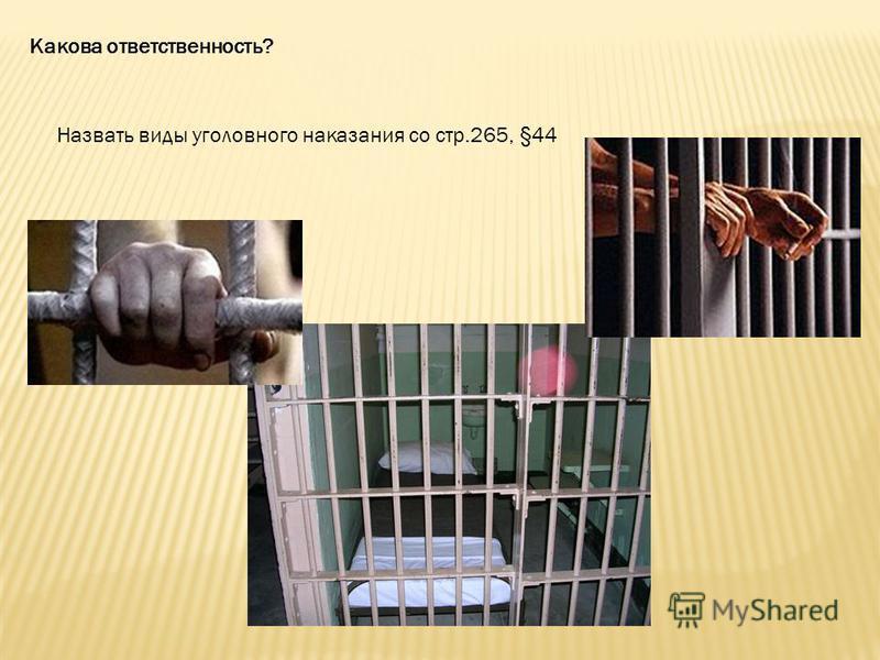 Какова ответственность? Назвать виды уголовного наказания со стр.265, §44