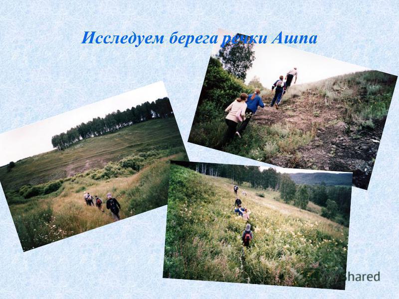 Исследуем берега речки Ашпа