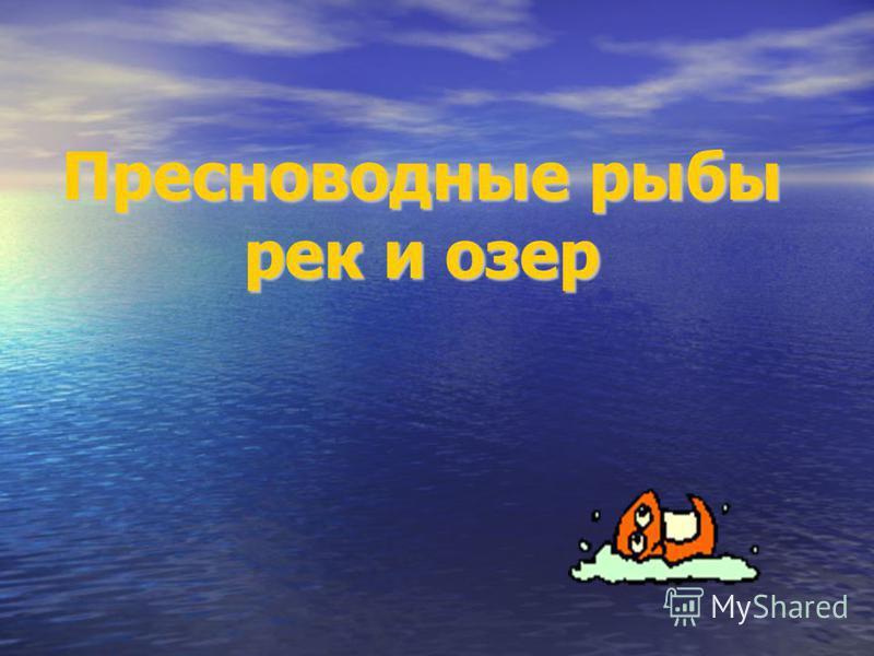 Пресноводные рыбы рек и озер