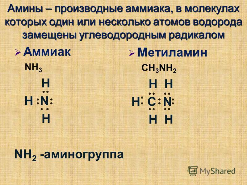 Амины – производные аммиака, в молекулах которых один или несколько атомов водорода замещены углеводородным радикалом Аммиак NH 3 Н Н N Н NH 2 -аминогруппа Метиламин CH 3 NH 2 H H Н С N H H