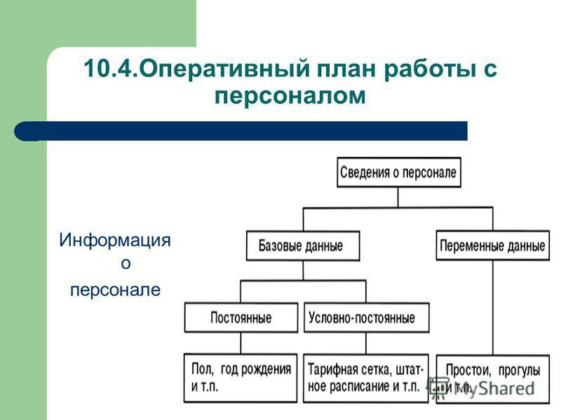 10.4. Оперативный план работы с персоналом Информация о персонале