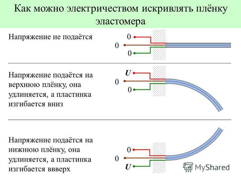 Как можно электричеством искривлять плёнку эластомера U 0 0 Напряжение подаётся на нижнюю плёнку, она удлиняется, а пластинка изгибается вверх 0 0 0Напряжение не подаётся U 0 0 Напряжение подаётся на верхнюю плёнку, она удлиняется, а пластинка изгиба