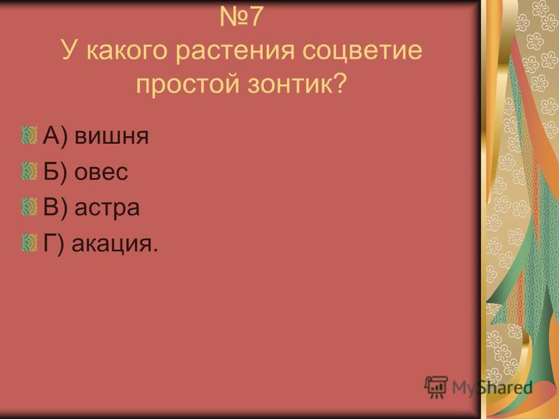 7 У какого растения соцветие простой зонтик? А) вишня Б) овес В) астра Г) акация.