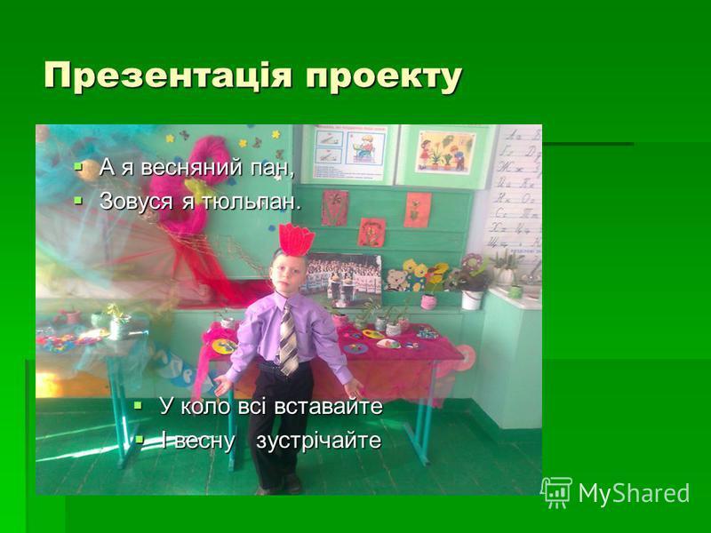 Презентація проекту А я весняний пан, А я весняний пан, Зовуся я тюльпан. Зовуся я тюльпан. У коло всі вставайте У коло всі вставайте І весну зустрічайте І весну зустрічайте