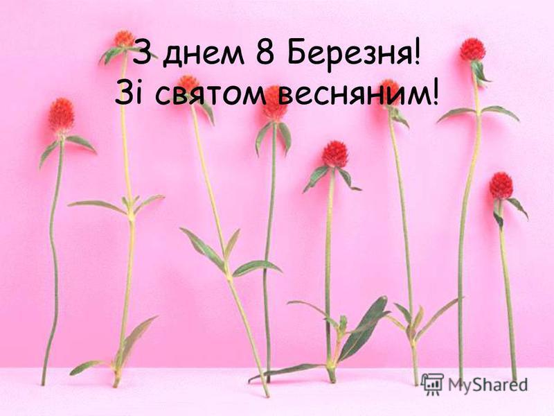 З днем 8 Березня! Зі святом весняним!