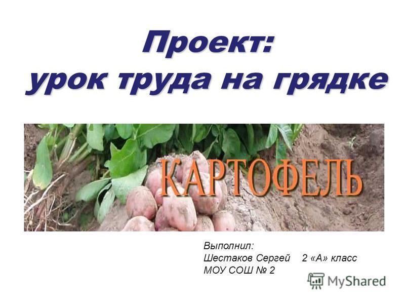 Проект: урок труда на грядке Выполнил: Шестаков Сергей 2 «А» класс МОУ СОШ 2