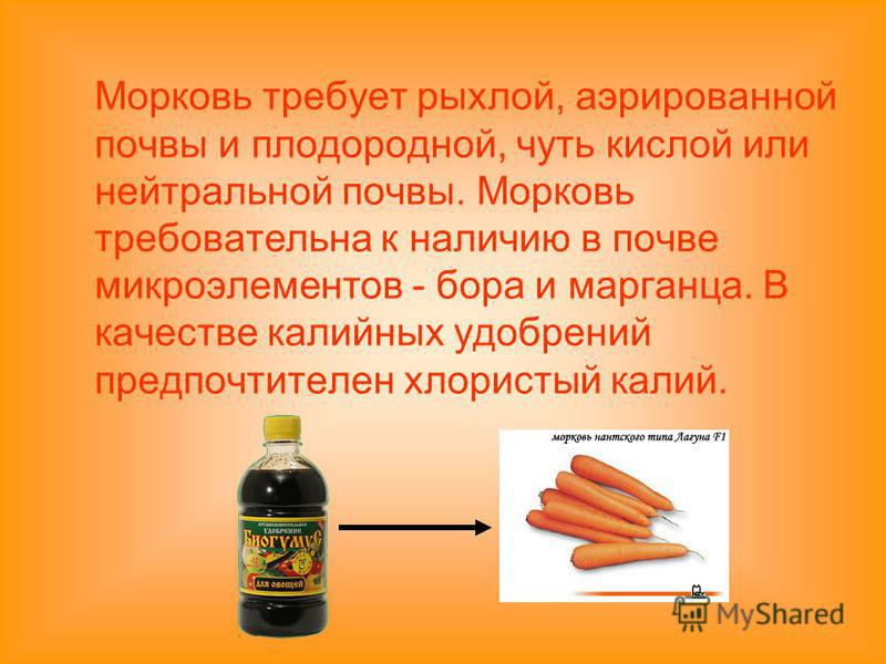 Морковь требует рыхлой, аэрированной почвы и плодородной, чуть кислой или нейтральной почвы. Морковь требовательна к наличию в почве микроэлементов - бора и марганца. В качестве калийных удобрений предпочтителен хлористый калий.