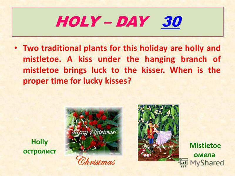 HOLY – DAY 3030 Two traditional plants for this holiday are holly and mistletoe. A kiss under the hanging branch of mistletoe brings luck to the kisser. When is the proper time for lucky kisses? Holly остролист Mistletoe омела Christmas