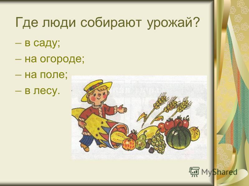 Где люди собирают урожай? –в саду; –на огороде; –на поле; –в лесу.