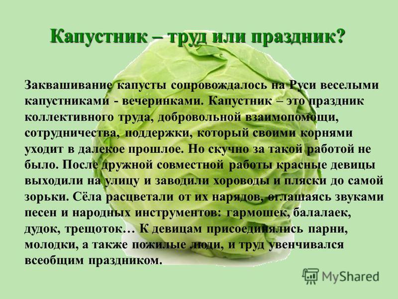 Заквашивание капусты сопровождалось на Руси веселыми капустниками - вечеринками. Капустник – это праздник коллективного труда, добровольной взаимопомощи, сотрудничества, поддержки, который своими корнями уходит в далекое прошлое. Но скучно за такой р