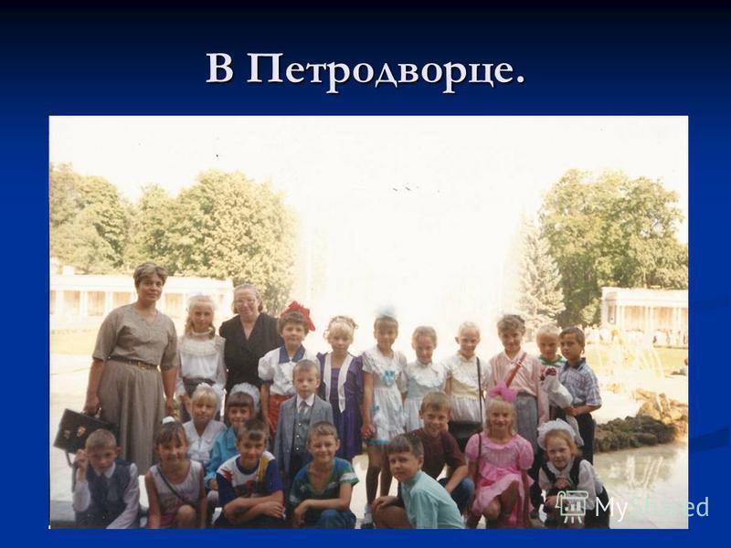 В Петродворце.