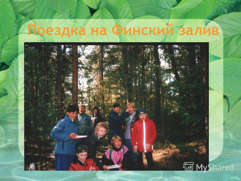 Поездка на Финский залив