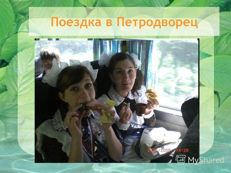 Поездка в Петродворец