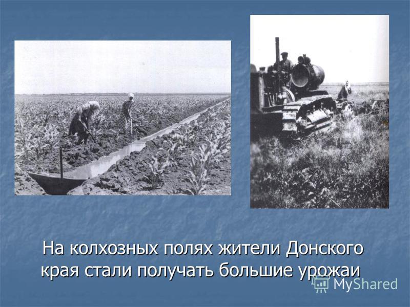 На колхозных полях жители Донского края стали получать большие урожаи На колхозных полях жители Донского края стали получать большие урожаи