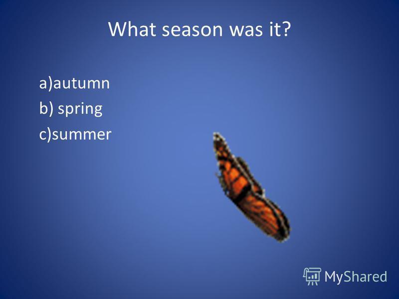 What season was it? a)autumn b) spring c)summer