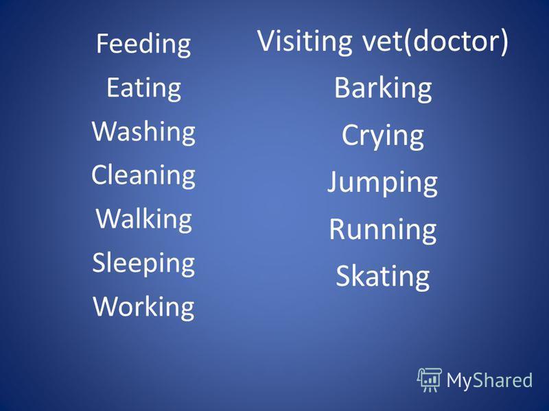 Feeding Eating Washing Cleaning Walking Sleeping Working Visiting vet(doctor) Barking Crying Jumping Running Skating