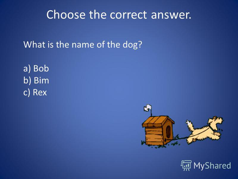 Choose the correct answer. What is the name of the dog? a) Bob b) Bim c) Rex