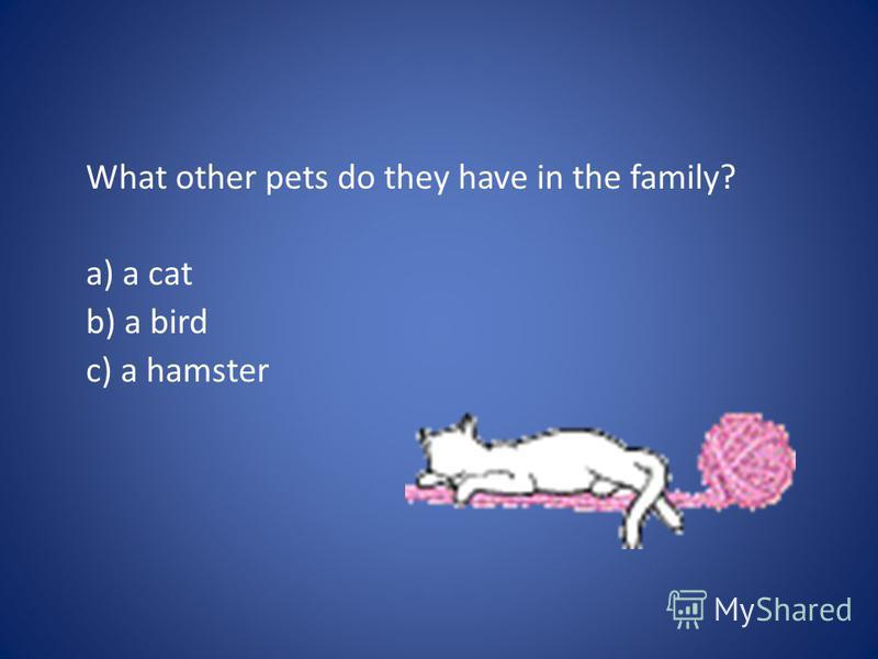 What other pets do they have in the family? a) a cat b) a bird c) a hamster