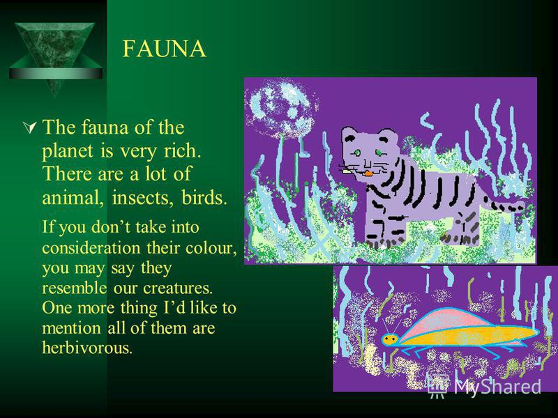 FAUNA The fauna of the planet is very rich. There are a lot of animal, insects, birds. If you dont take into consideration their colour, you may say they resemble our creatures. One more thing Id like to mention all of them are herbivorous.