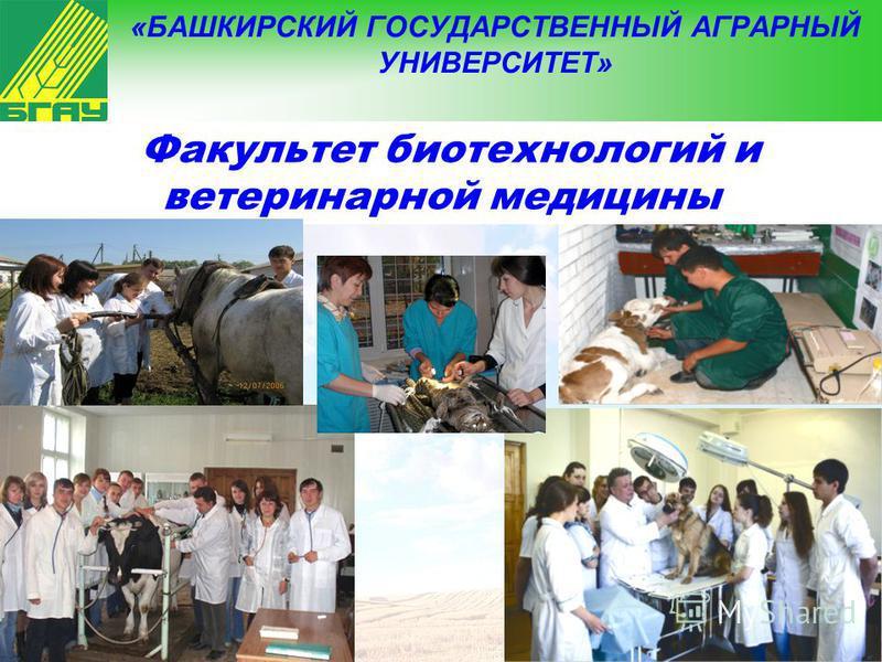 8 «БАШКИРСКИЙ ГОСУДАРСТВЕННЫЙ АГРАРНЫЙ УНИВЕРСИТЕТ» Факультет биотехнологий и ветеринарной медицины