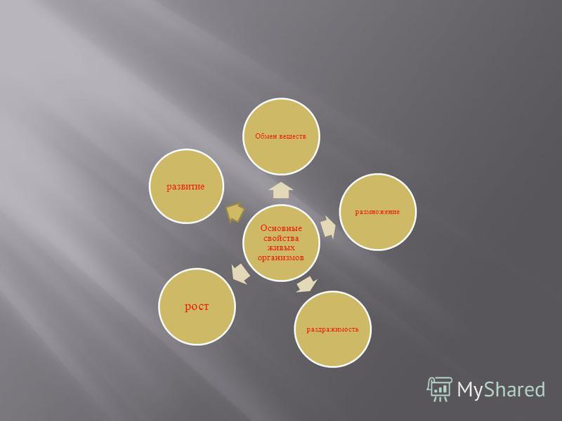 Основные свойства живых организмов Обмен веществ размножение раздражимость рост развитие