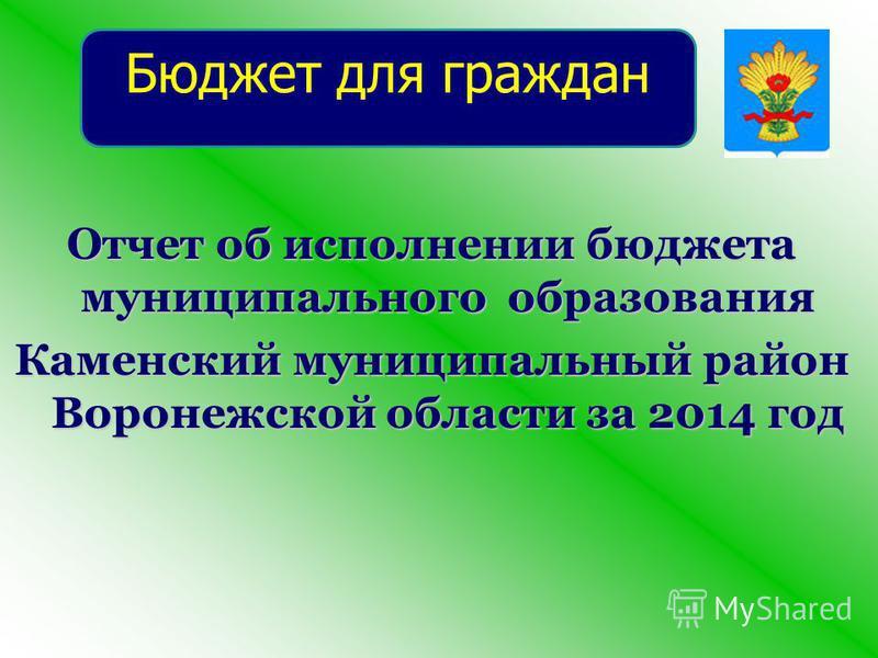 Отчет об исполнении бюджета муниципального образования Каменский муниципальный район Воронежской области за 2014 год Бюджет для граждан