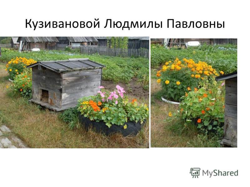 Кузивановой Людмилы Павловны