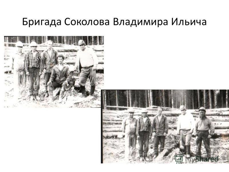 Бригада Соколова Владимира Ильича
