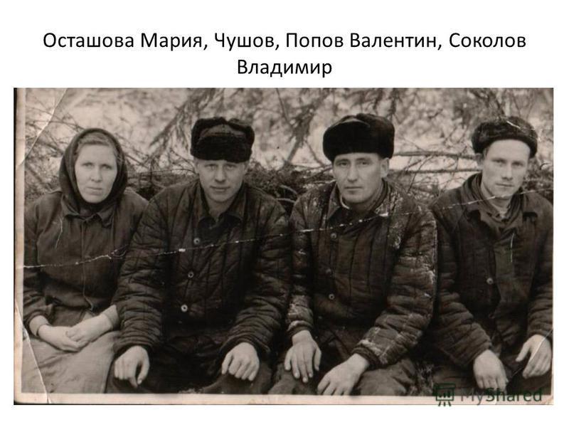 Осташова Мария, Чушов, Попов Валентин, Соколов Владимир