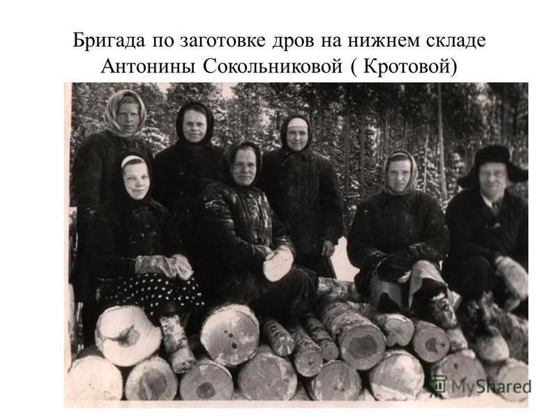 Бригада по заготовке дров на нижнем складе Антонины Сокольниковой ( Кротовой)
