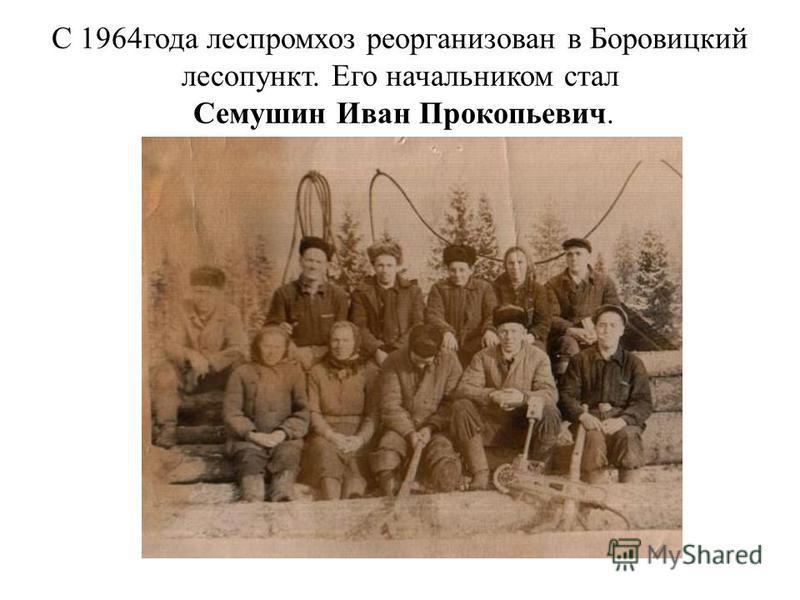 С 1964 года леспромхоз реорганизован в Боровицкий лесопункт. Его начальником стал Семушин Иван Прокопьевич.