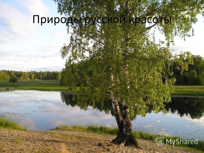 Природы русской красоты