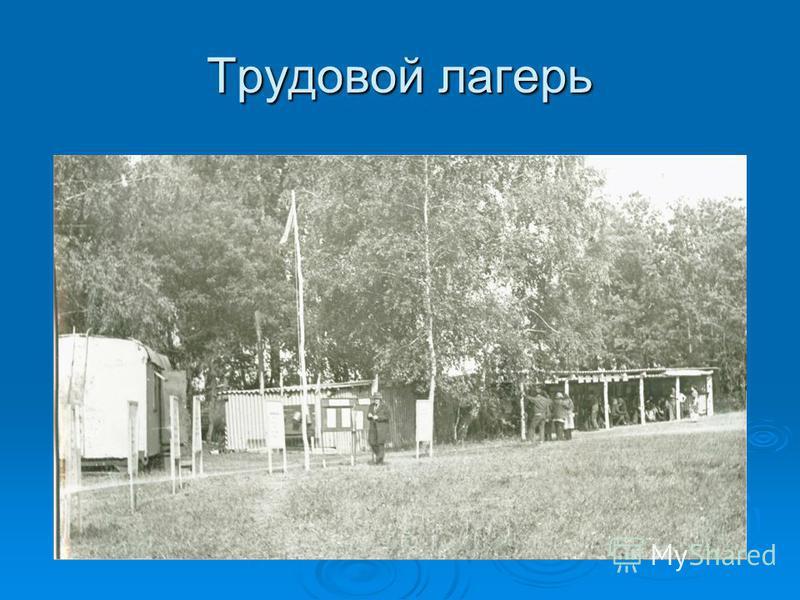 Трудовой лагерь