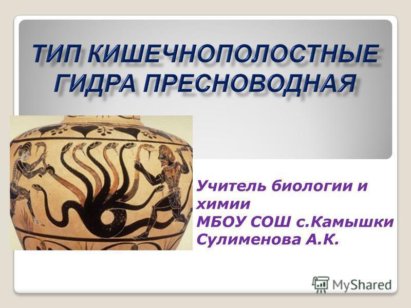 Учитель биологии и химии МБОУ СОШ с.Камышки Сулименова А.К.