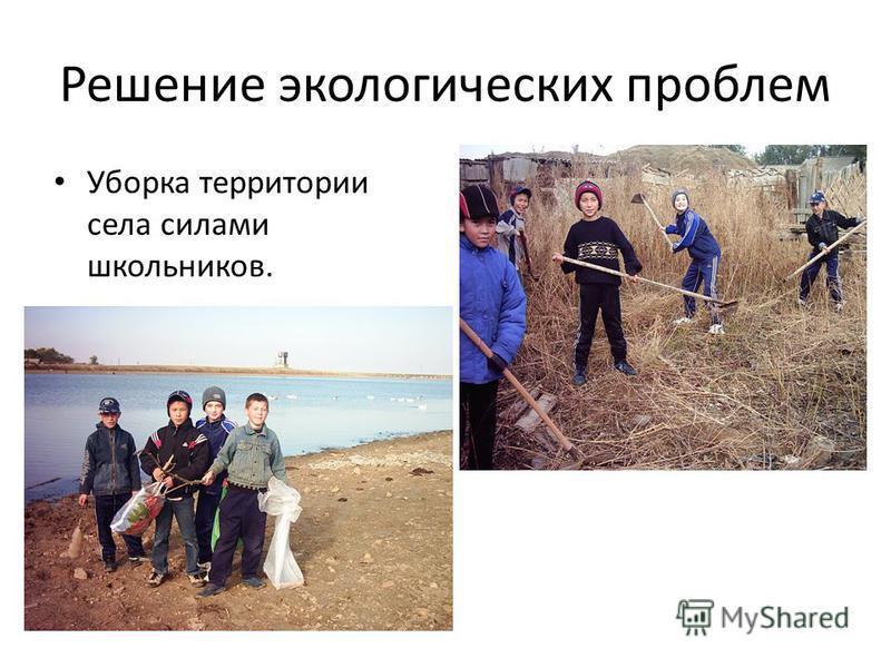 Решение экологических проблем Уборка территории села силами школьников.