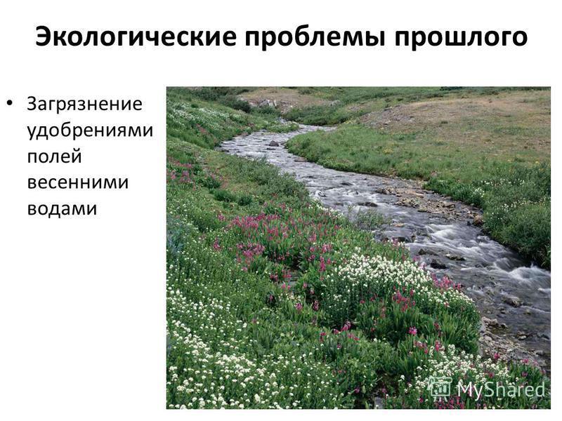 Экологические проблемы прошлого Загрязнение удобрениями полей весенними водами
